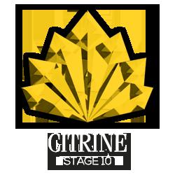 Citrine-stg10-logo-transparent-rasta-white-250