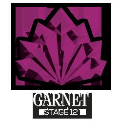 Garnet-stg12-logo-transparent-rasta-white-250